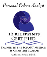 12 Blueprints Certified