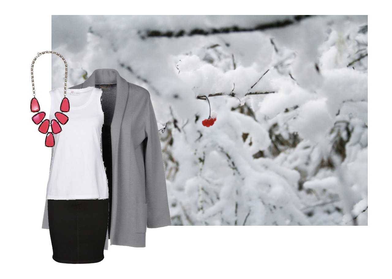 right Winter business casual from snowy landscape with red berries